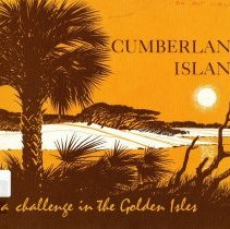 Image of Cumberland Island:  a challenger in the Golden Isles - Book