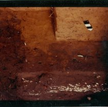 Image of Early excavation of grave at Dorion dig. - Print, Photographic