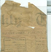 Image of Tallahassee newspaper report on insurance co. finances 12/31/1894