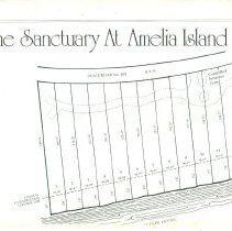 Image of Amelia Realty co. sales literature for A.I. Plantation  1982
