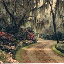 Image of Bellingrath Gardens