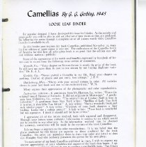 Image of Camellais Loose Leaf