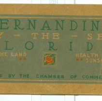 Image of Fernandina By The Sea - Pamphlet