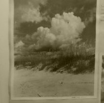 Image of Sea Oats and clouds