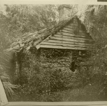 Image of Tabby House with wood roof