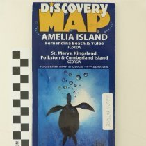 Image of Souvenir map of Amelia Island and surrounding area 2011 - Map