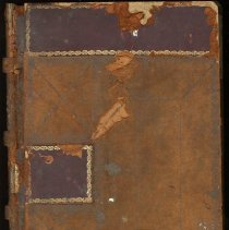 Image of Sheriff's Fee Book, Nassau Co., Florida - Ledger