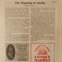 Image of The Mapping of Amelia - Magazine