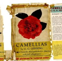 Image of Camellias cover front and flap