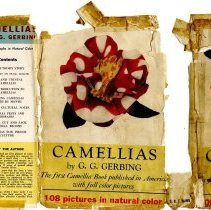 Image of Camellias Cover back and flap