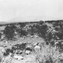 Image of Arizona Landscape.  Black and white photographic print.  View with mountains in the distance and rocks and scrub oak in the foreground. Maker's Mark: Unknown - Photographs