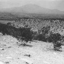 Image of Arizona Landscape.  View of hills covered with brush and mountains in the distance.  Black and white photographic print. Maker's Mark: Unknown - Photographs