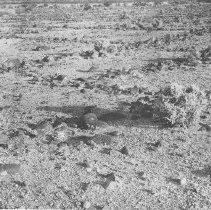 Image of Arizona Ruins.  Black and white photographic print of unidentified ruins.  Foundations for the buildings are visible on the surface of the landscape. Maker's Mark: Unknown - Photographs