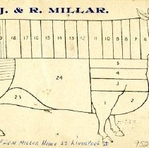 Image of Reverse of Card Showing Cuts of Beef