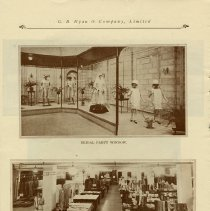 Image of Bridal Party Window and Basement Store, page 12