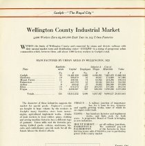 Image of Wellington County Industrial Market, page 6