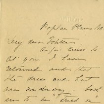 Image of .2 Letter from Lincoln Goldie's Mother to Estella, July 1902