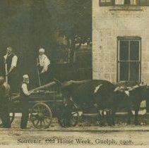 Image of Men, Wagon & Oxen, 1908