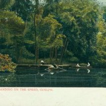 Image of 1986.18.253 - Postcard