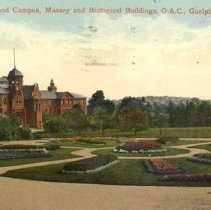 Image of Flower Beds and Campus, OAC