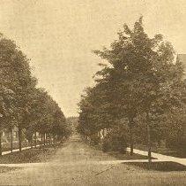 Image of Park Avenue 1907