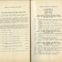Image of Rules for Judging on Light Horse Show, page 24