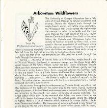Image of Arboretum Wildflowers, p.17