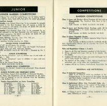 Image of Junior Competitions; Competitions, pp.28-29
