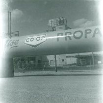 Image of 1992.28.79 - Photograph