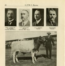 Image of Comparative Statement of Entries in Beef and Dairy Classes Since 1910