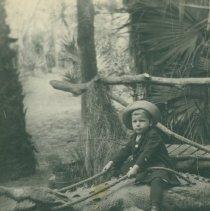 Image of John Newstead Jr. on Alligator