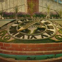 Image of Conservatory Floral Clock