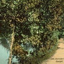 Image of Lovers Lane, Riverside Park