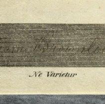 Image of Detail 6