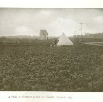 Image of Page 109 Field of Potatoes