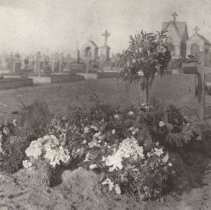 Image of Page 123 McCrae's Grave,Floral Tributes