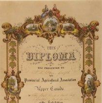 Image of Diploma Image