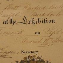 Image of Diploma - Detail 2