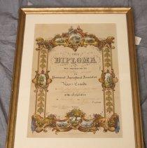 Image of Diploma in Frame
