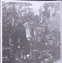 Image of M1968x_452_1_loose_5_photo_clothes_drying_on_trees