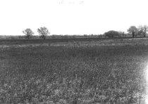 Image of P1997.13817 - Print, Photographic