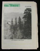 Image of Rectangular, 22 page, black and white high school newspaper. The front page has a yellow outline, the title is in green on the top left/middle side next to a small drawing of a school and there is a black and white photo of pine trees and a snow capped mountain in the background. The back page has a black, white and green drawing of a trojan soldier against a yellow background. 