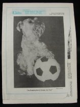 Image of Rectangular, 8 page, black and white high school newspaper. The front page has a light blue outline, the title is in light blue on the top left/middle side next to a small drawing of a school and there is a black and white photo of a small terrier with his paw on top of a soccer ball.  Layout is slightly different from most newspapers. The front page and the last page are on the same leaf and run horizontally, the rest of the pages run vertically. When folded in half the front page or the back page is it 29 x 21.8cm. When combining the front and back page, the dimensions are 29 x 43.5 cm. When opened completely the width runs at 58 cm across  Issued by Aurora Central High School. Vol 29. No. 3 - Newspaper