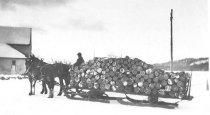 Image of Hauling Wood on Sleds - 1974.02.0003