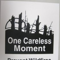 Image of One Careless Moment, Prevent Wildfires - Poster, Instructional