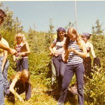 Image of YCC Enrollees Examining Plants in a Clearcut - 2012.087.052