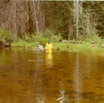 Image of YCC Enrollee wearing a rain slicker wading in a lake - 2012.087.087