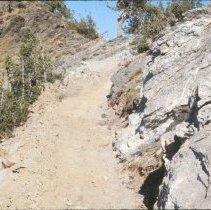 Image of Willard Peak Trail  - 2009.002.243