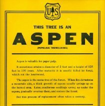 Image of Aspen Tree Education Poster - Poster