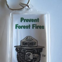 Image of Prevent Forest Fires, Key Ring - Chain, Key